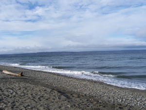 The beach at Shilshole