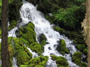 Clearwater Falls, Umpqua River, Oregon
